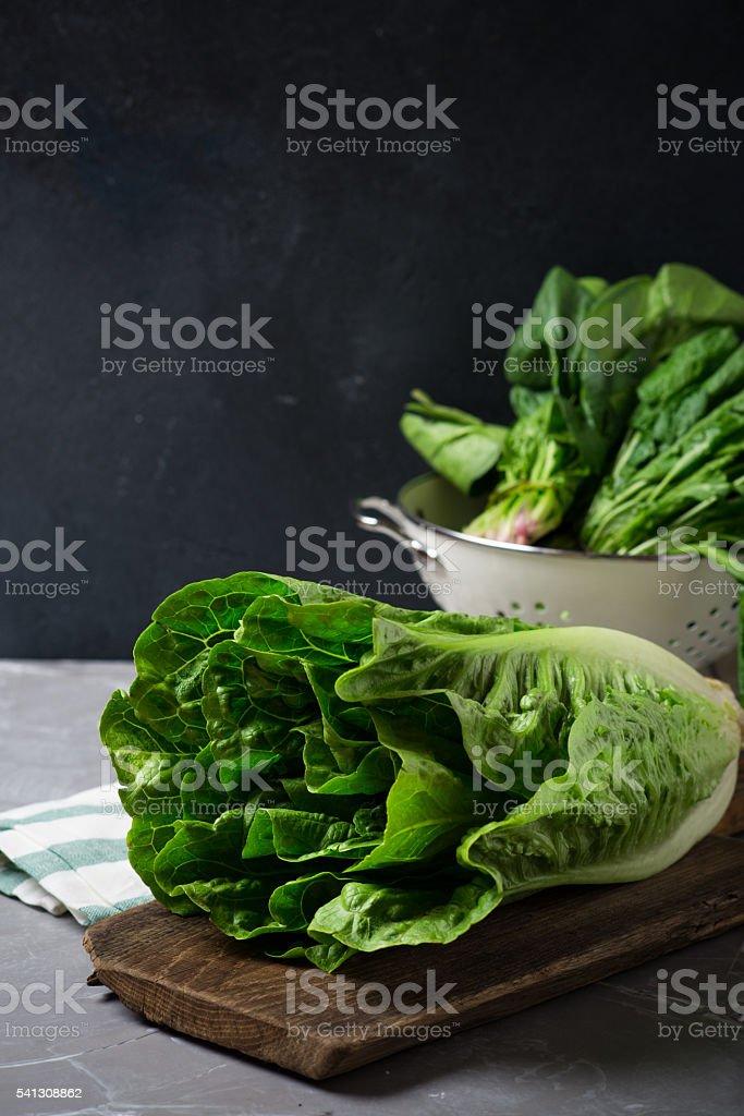 Green salad leaves stock photo