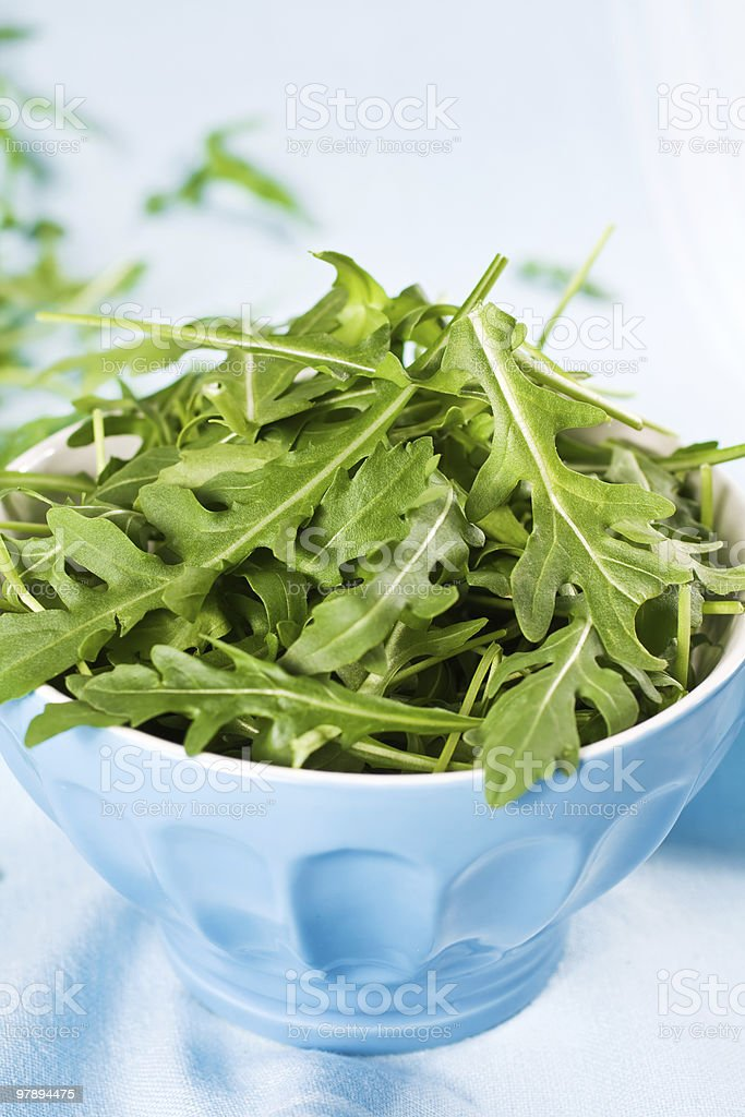 Green Salad on Blue royalty-free stock photo