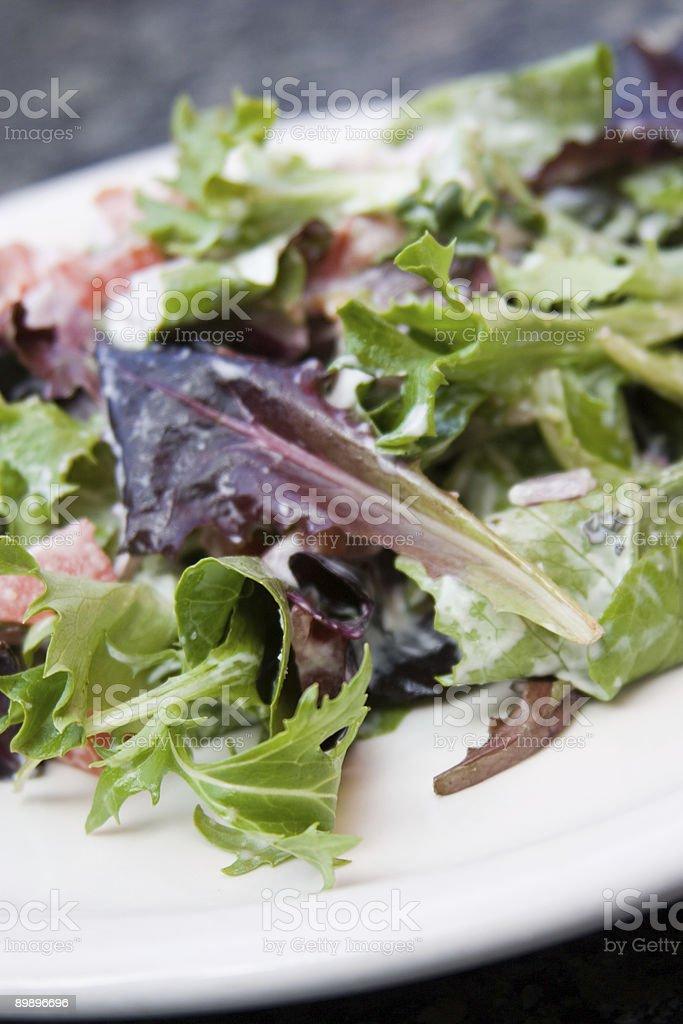 Green Salad royalty-free stock photo