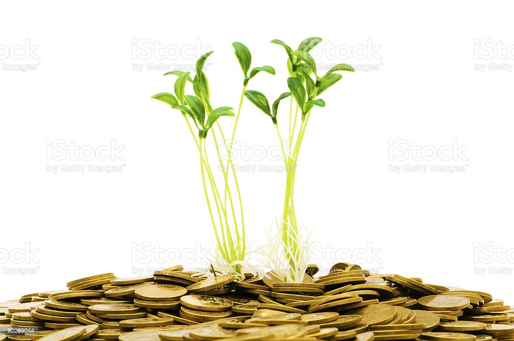 Green seedlings growing from the pile of coins royalty-free stock photo