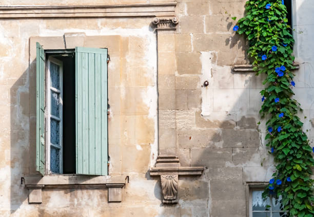 green shutters and blue clematis flowers old green window shutters and  clematis vine withe blue flowers stone house stock pictures, royalty-free photos & images