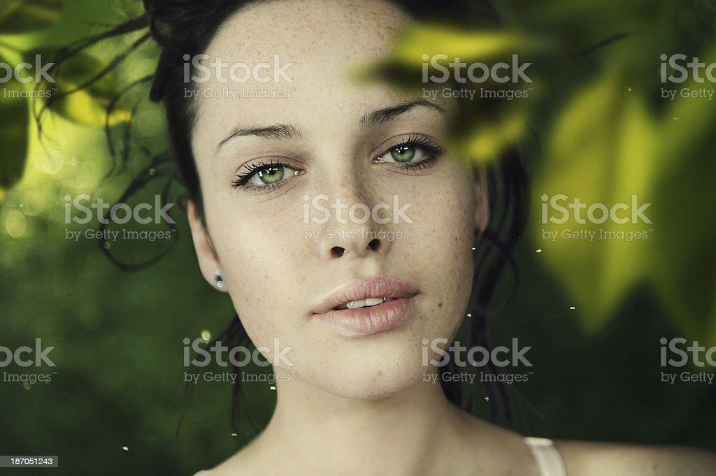 green sight royalty-free stock photo