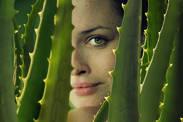 green sight a close-up portrait of young beautiful women with aloe vera dark spots face stock pictures, royalty-free photos & images
