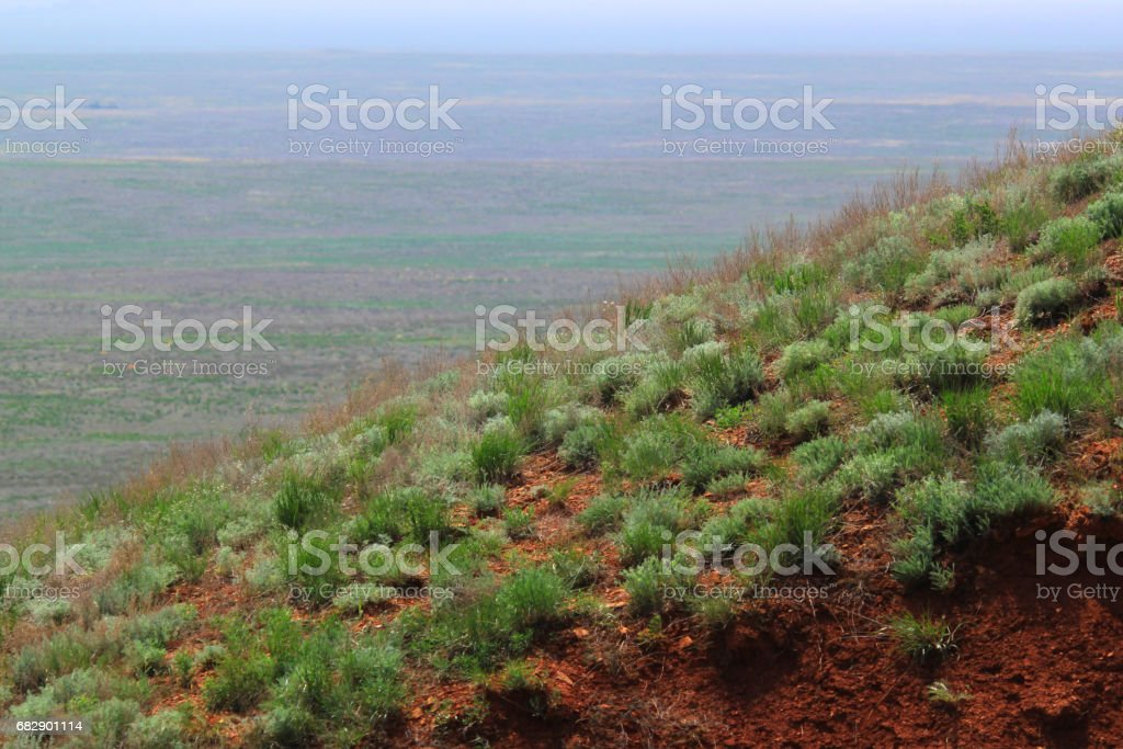 Green slope of the steppe hill stock photo