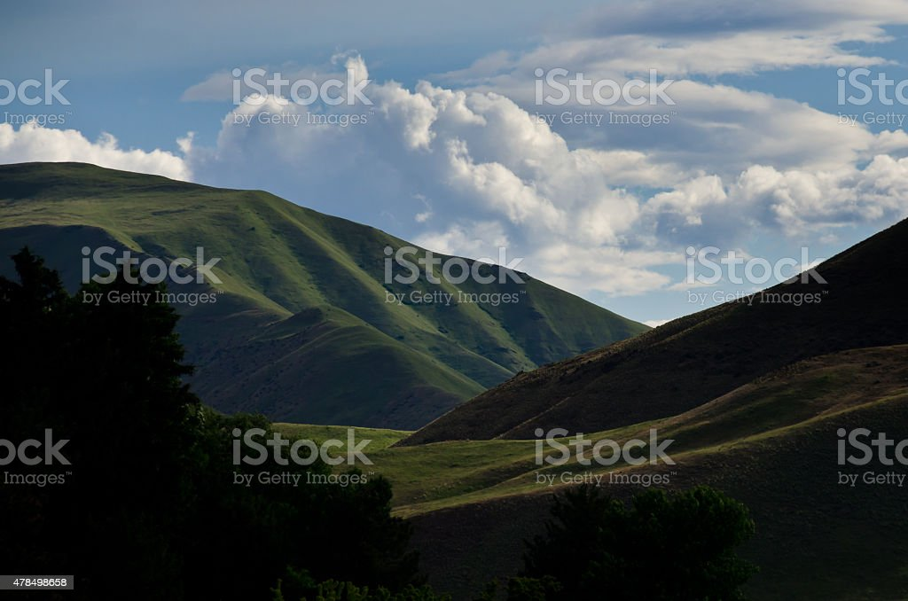 Green Slopes of Hells Canyon in Spring stock photo