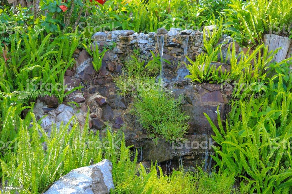 grön liten trädgård för bakgrund - Royaltyfri Arkitektur Bildbanksbilder
