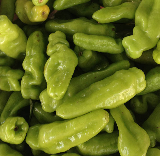 Green Smell Pepper stock photo