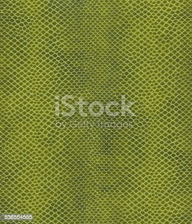Green Snake skin Textured Background