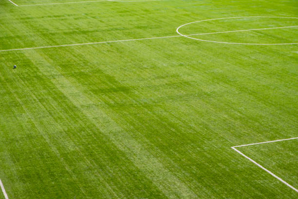 Green Soccer Field stock photo