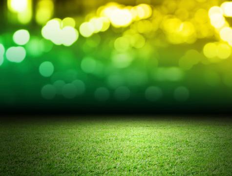 Green soccer field with bokeh backdrop