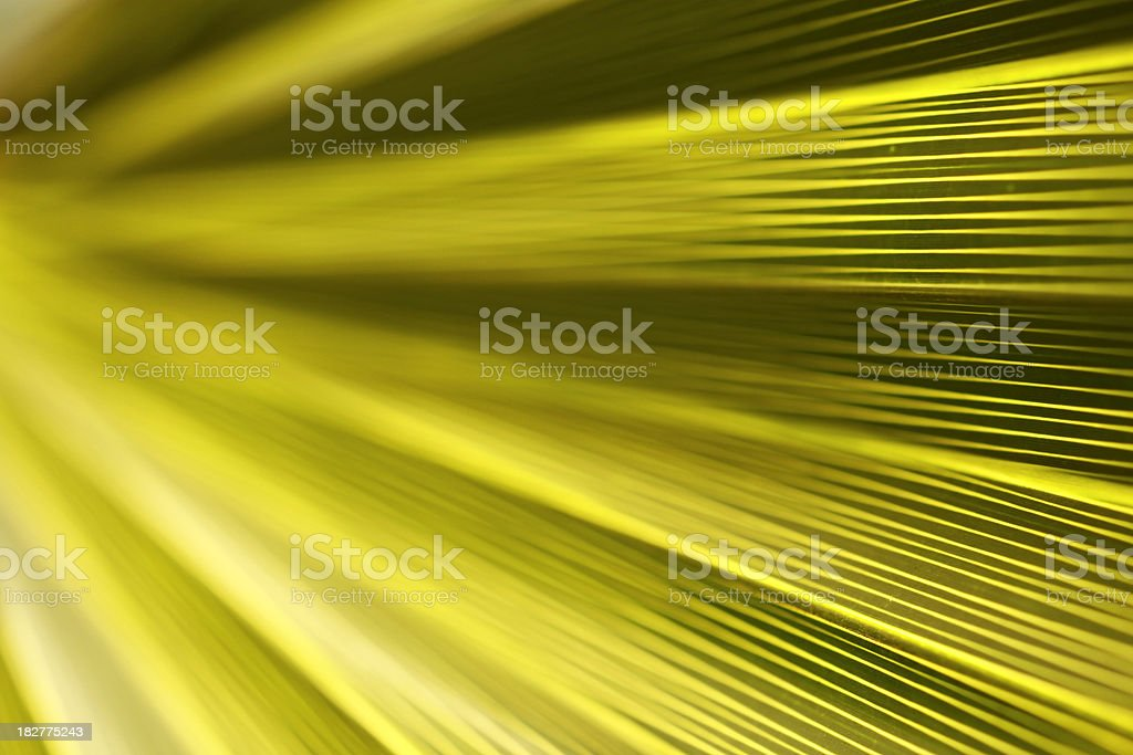 Green soft background stock photo