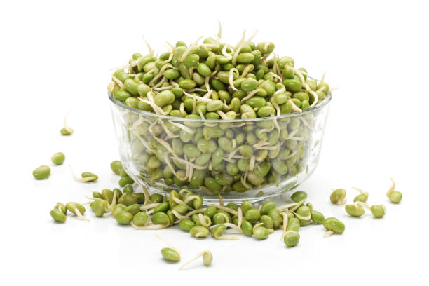green  soya bean bud on the white background stock photo