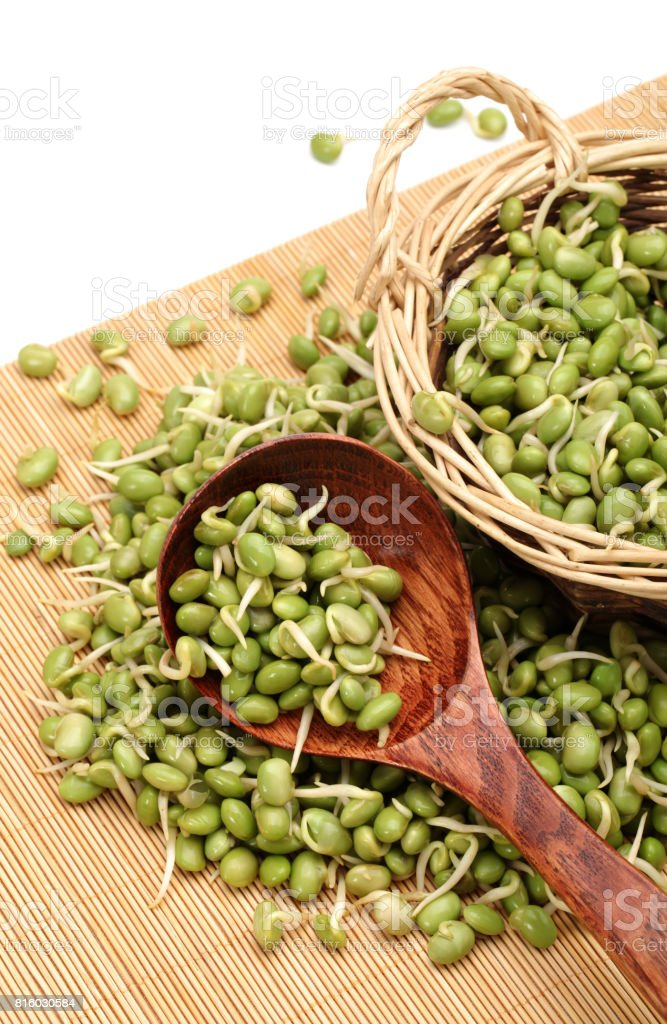 Green soya bean bud on the white background - stock photography stock photo stock photo