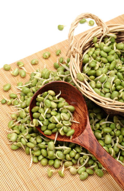 Green soya bean bud on the white background - stock photography stock photo stock photo