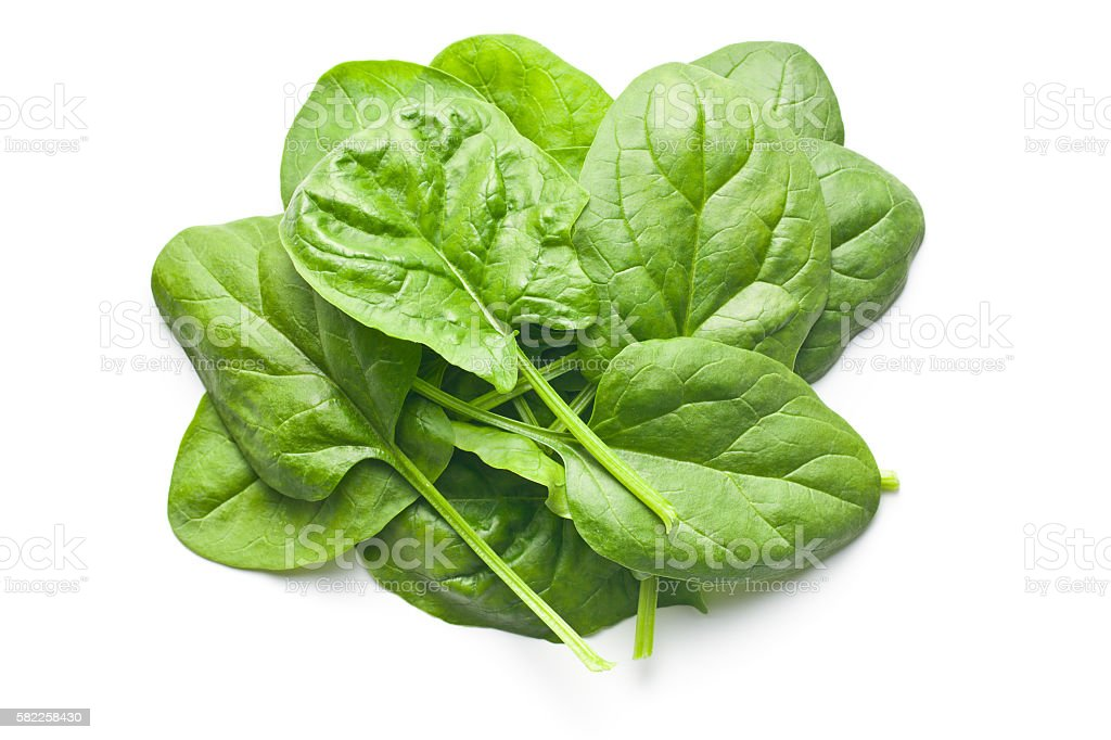 green spinach leaves stock photo