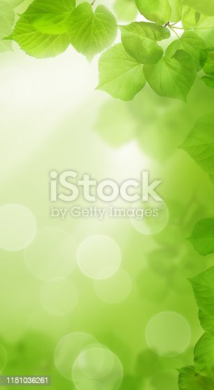 Green spring background with bokeh light for cell phone wallpaper