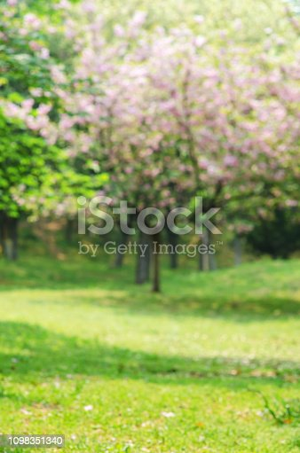 1067054470istockphoto Green Spring Blurred Abstract Background 1098351340