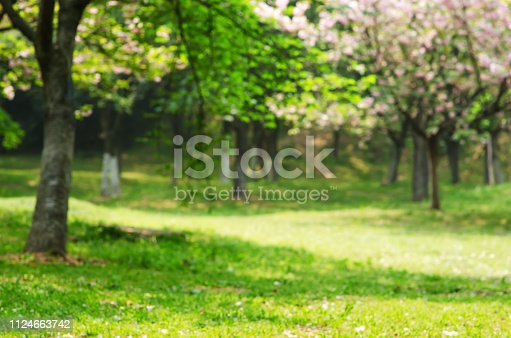 1067054470istockphoto Green Spring Blurred Abstract Background 1124663742