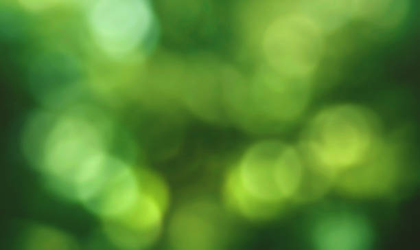 Green Spring Bokeh Lights Background stock photo