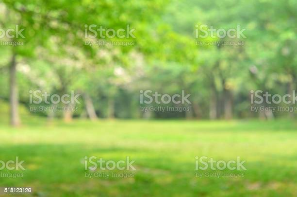 Green spring defocused abstract background picture id518123126?b=1&k=6&m=518123126&s=612x612&h=obte27t1o p1kasl9w sj 0zfo8 qabxfg1wmpiehxc=