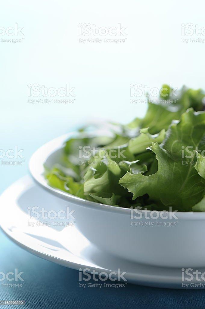 Green spring salad royalty-free stock photo