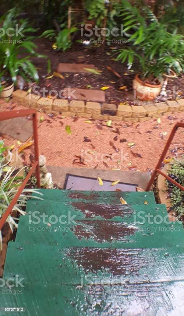 Green stairs during rain. High angle view of old wooden stairs leading to garden Australia Stock Photo