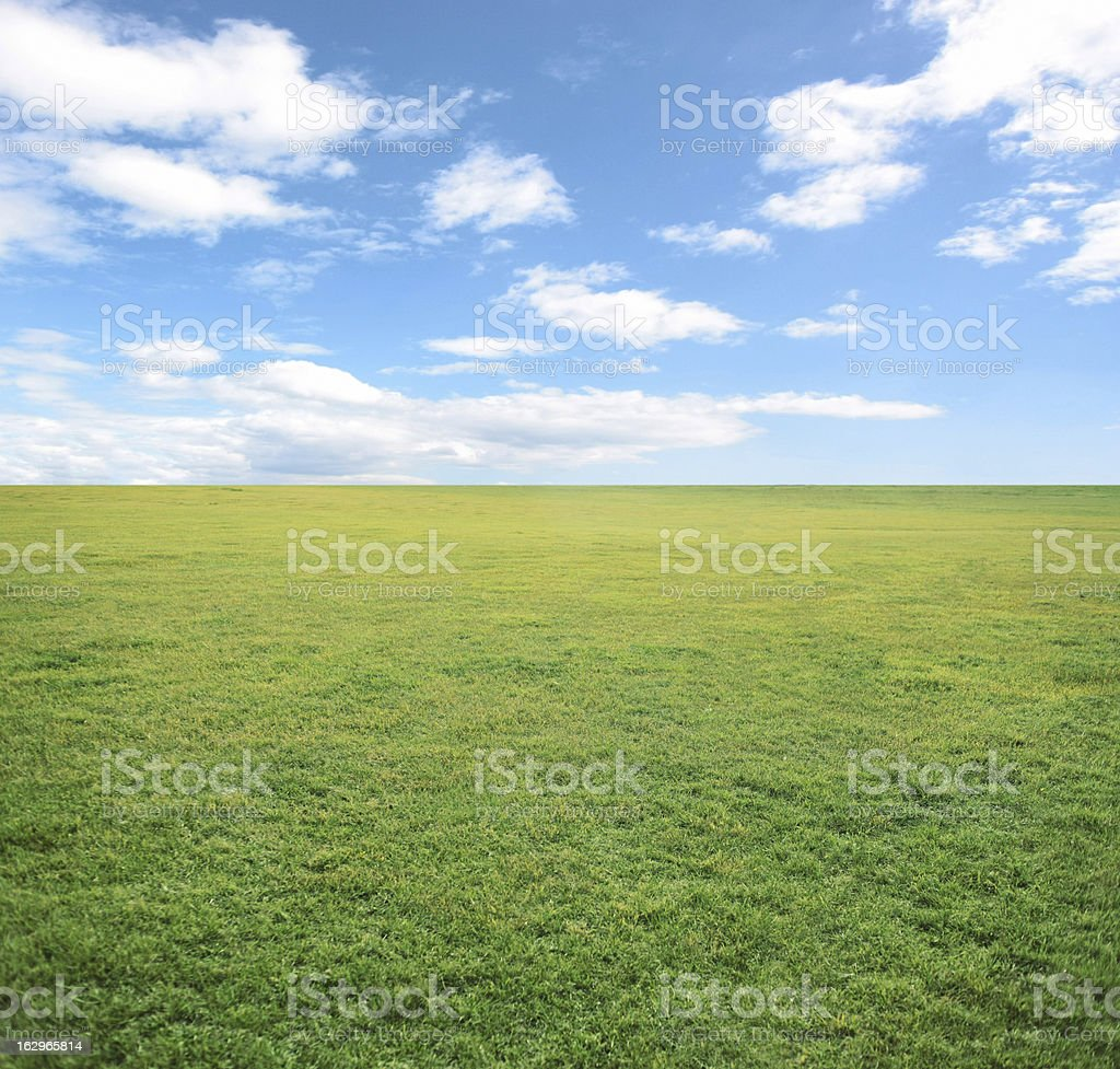 Green summer background royalty-free stock photo