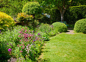 istock Green summer english garden Southern England UK 937295064