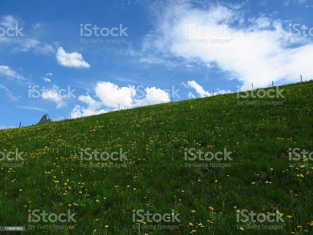 Green Swiss hill royalty-free stock photo