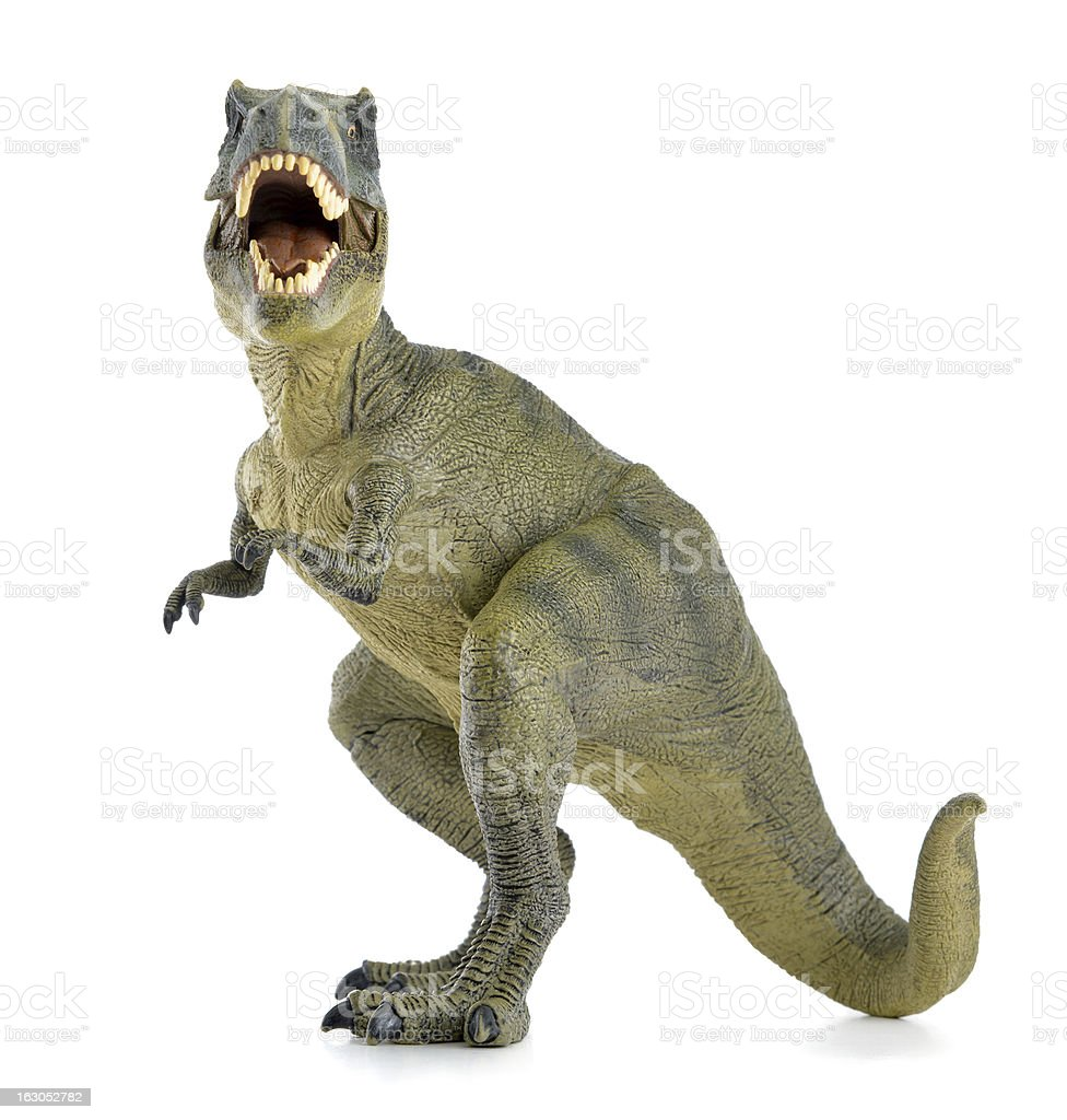 A green T rex dinosaur with its mouth open white background stock photo