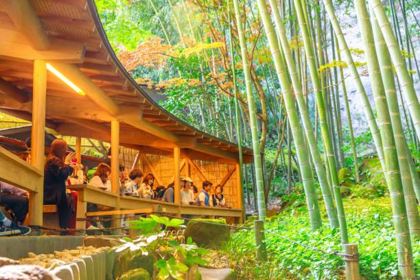 green tea at hokokuji temple - prefektura kanagawa zdjęcia i obrazy z banku zdjęć