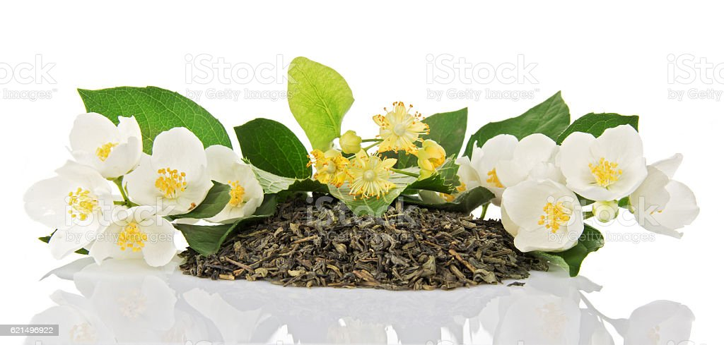 Green tea, dry, branches of jasmine and linden flowers isolated. photo libre de droits