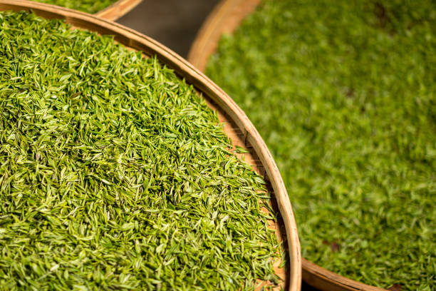 Green tea in a flat round split bamboo basket at Meijiawu stock photo
