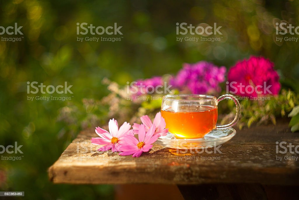 Green Tea In Beautiful Cup Stock Photo Download Image Now Istock