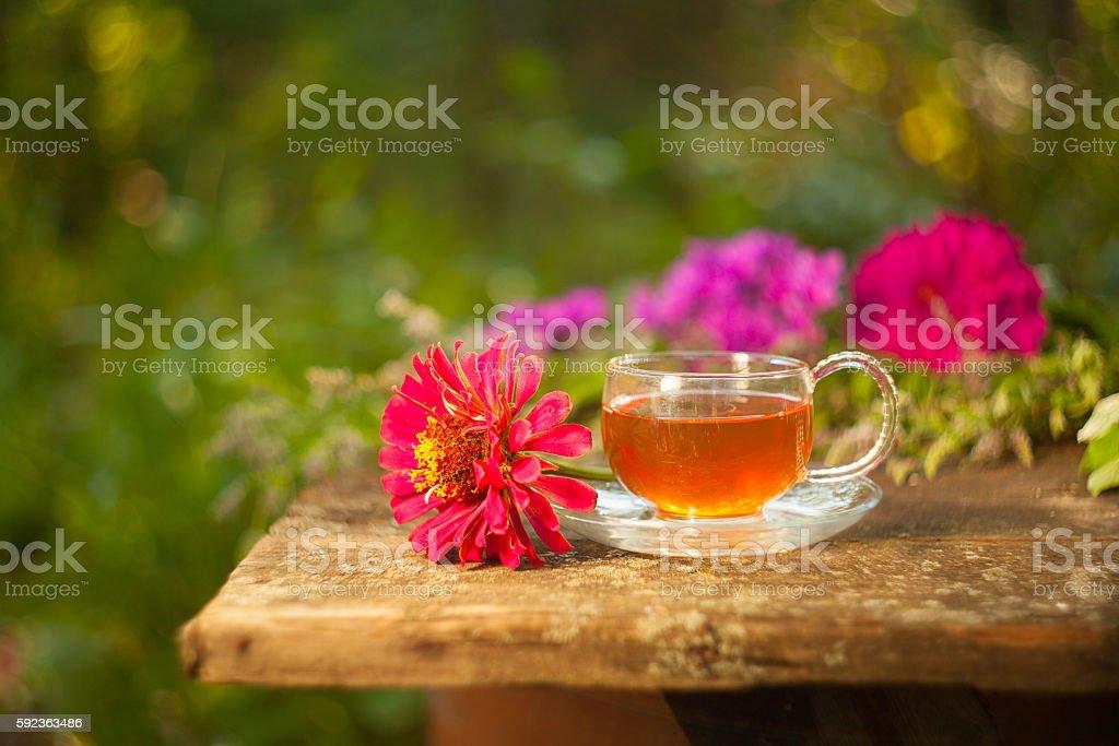 green tea in beautiful cup stock photo