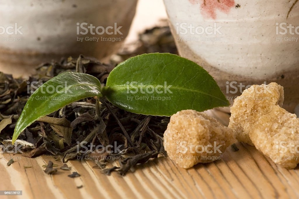 green tea with fresh branch royalty-free stock photo