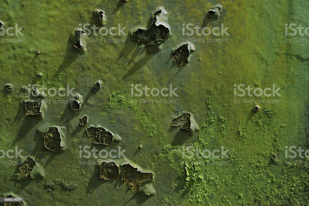 green texture royalty-free stock photo