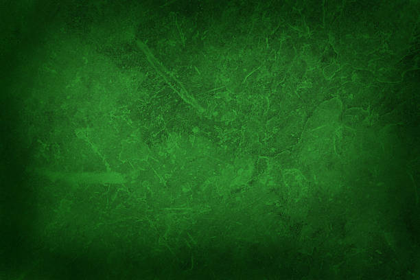 Royalty Free Green Background Texture Pictures, Images And