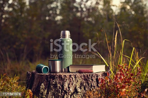 Green thermos, cup and book stand on a stump in the autumn forest. Forest background blurred