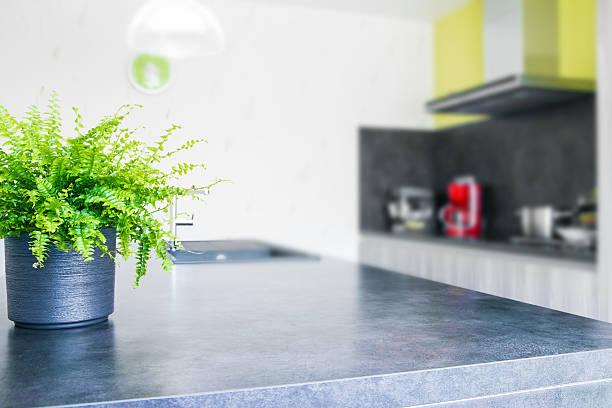green tigerfarn pflanze pot in modernen küche - küche deko grün stock-fotos und bilder