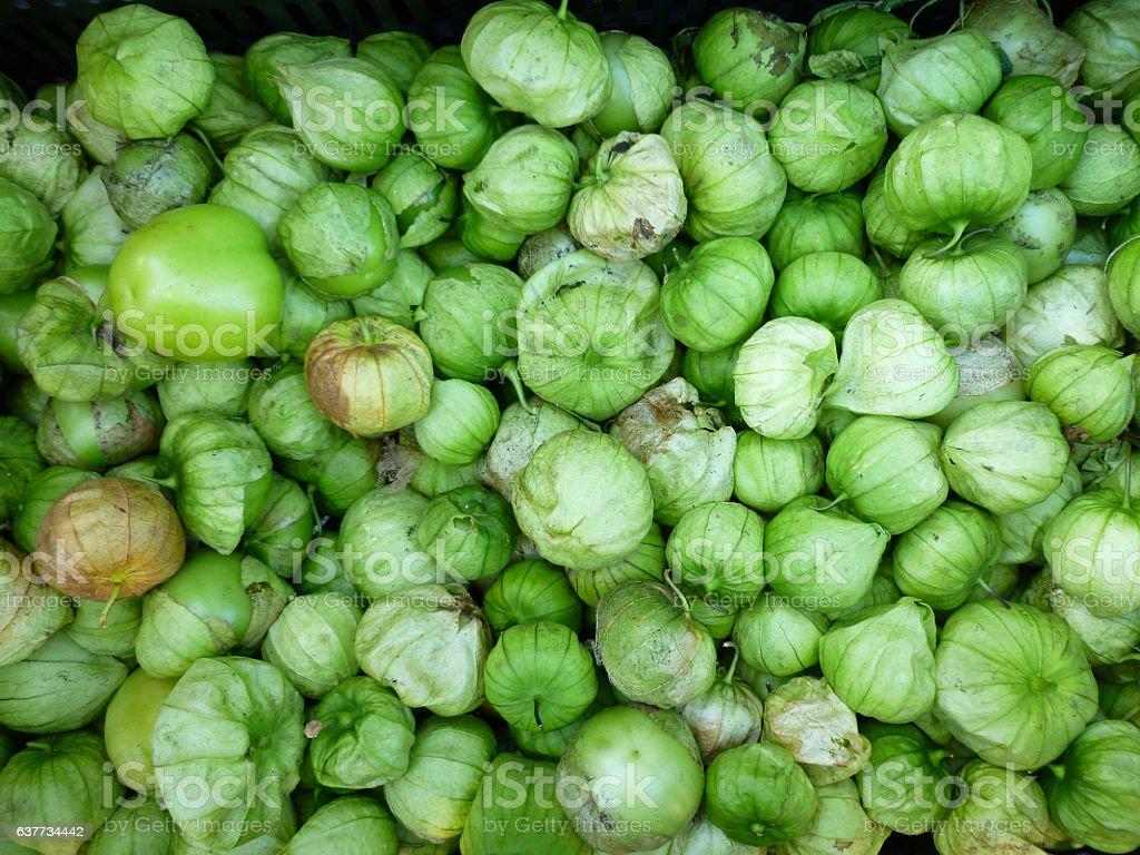 Green Tomatillos stock photo