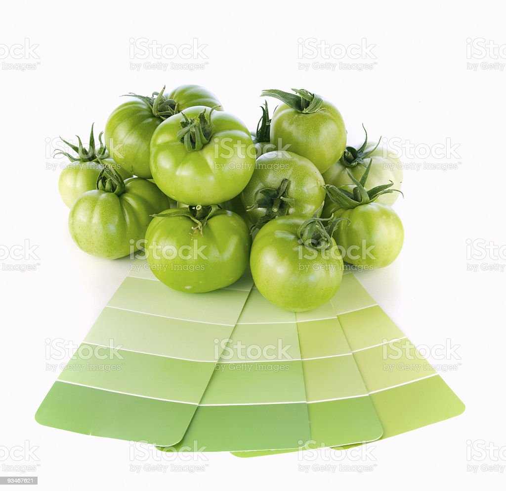 Green tomatoes and matching paint color swatches royalty-free stock photo