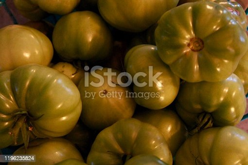 An end of season harvest of green tomatoes.