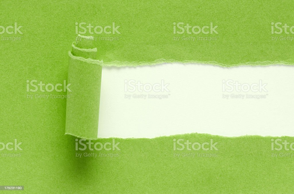 Green torn paper background textured isolated on white stock photo