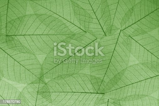 istock Green transpalent leaves paper background for decoration. 176570790