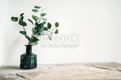 istock Green tree Branch putted into black glass vase on the natural stone mantel shelf on the white color wall background lit with side window light. Cozy home decor elements concept image. 1196418445