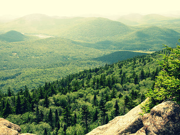 Green Tree Covered Adirondack Mountains with Rock stock photo