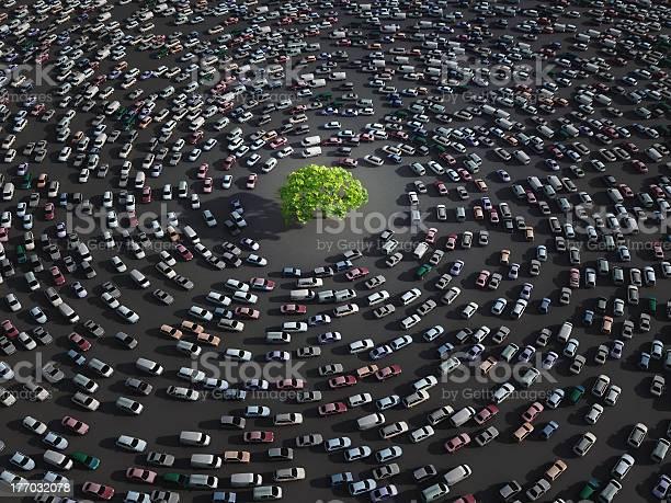 Green Tree Rodeado De Automóviles Foto de stock y más banco de imágenes de Embotellamiento