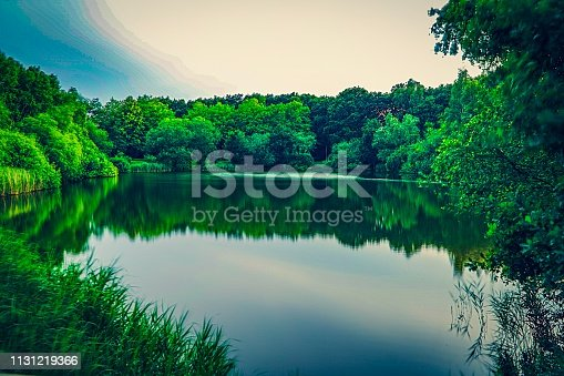 Picture shows some green trees at a lake.