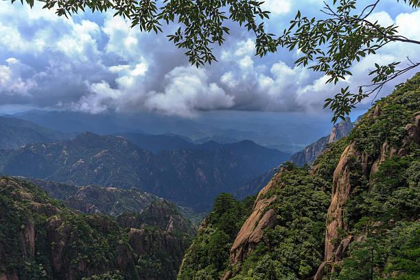 Grüne Bäume im mountain huangshan wie Berge und Wasser Gemälde – Foto